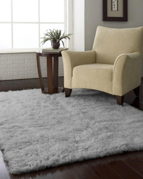 Gray Shag Rug On Pinterest Pictures 20