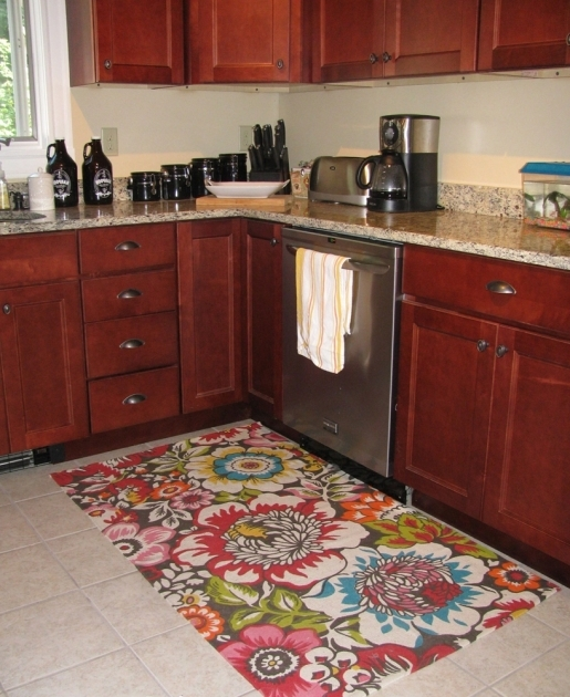 Kitchen Rug Runners For Home Interior Design Ideas Photos 64