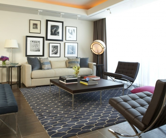 Living Room Area Rugs Shaw Area Rugs For Modern Living Room And Track Lighting Pic 13