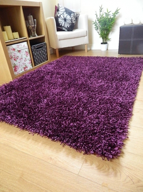 Purple Shag Rug Dark Picture 63