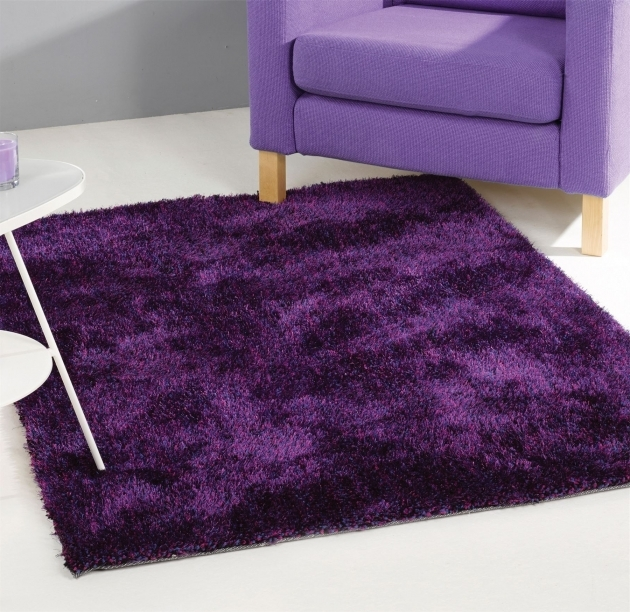 Purple Shag Rug Design Images 62