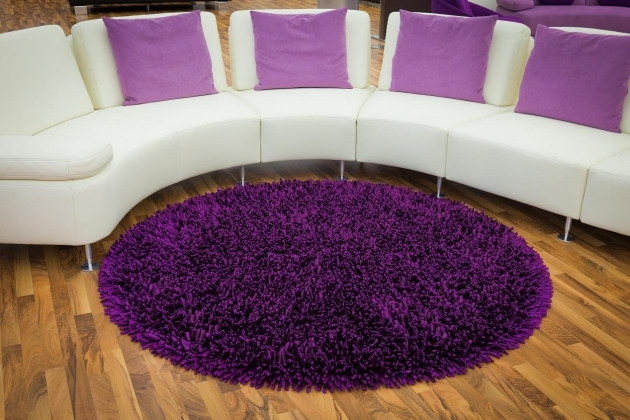 Purple Shag Rug For Room Decoration Ideas Image 70