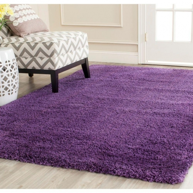 Purple Shag Rug Milan Shag 8 Ft X 10 Ft Area Rug Sg180 Images 23