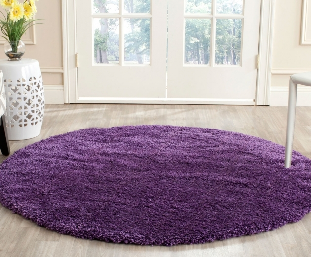Purple Shag Rug Milan Shags Safavieh Picture 24