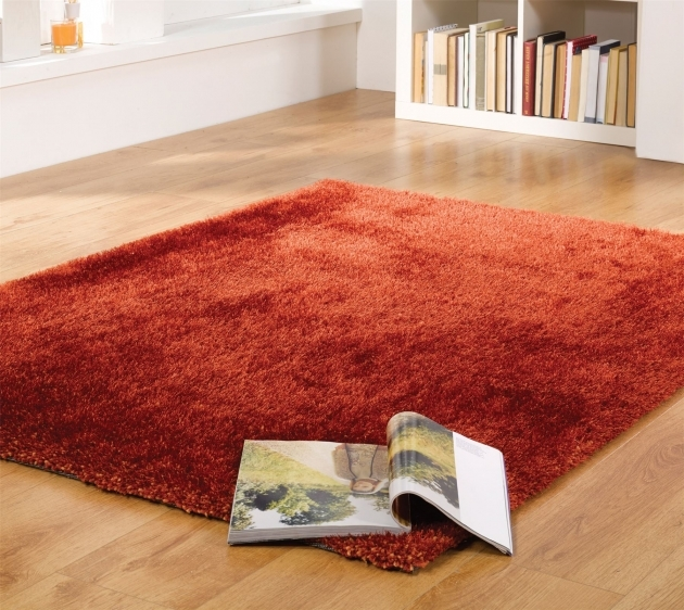 Red Shag Rug Living Room Ideas Image 27