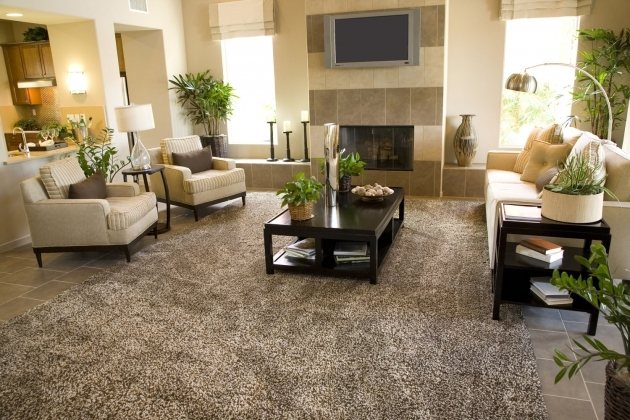 Extra Large Area Rugs Living Room Images 38