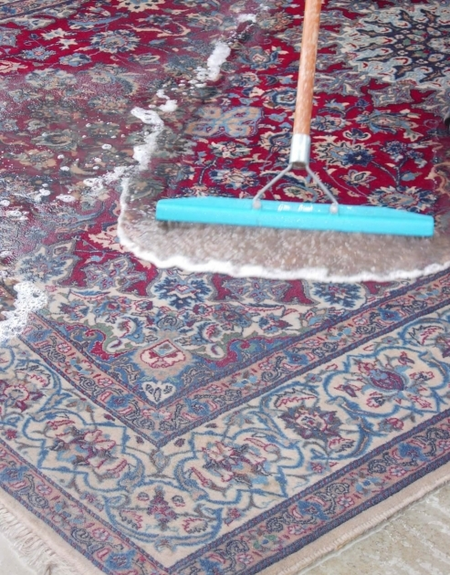 Cleaning Persian Rugs Design Ideas And Decor Images 15