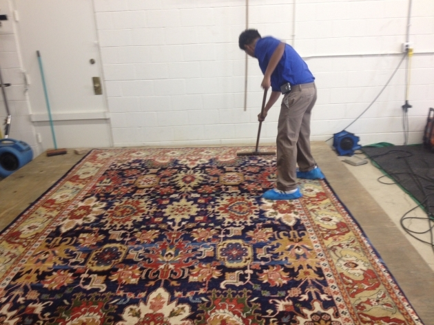 Cleaning Persian Rugs Mahindra Pictures 51