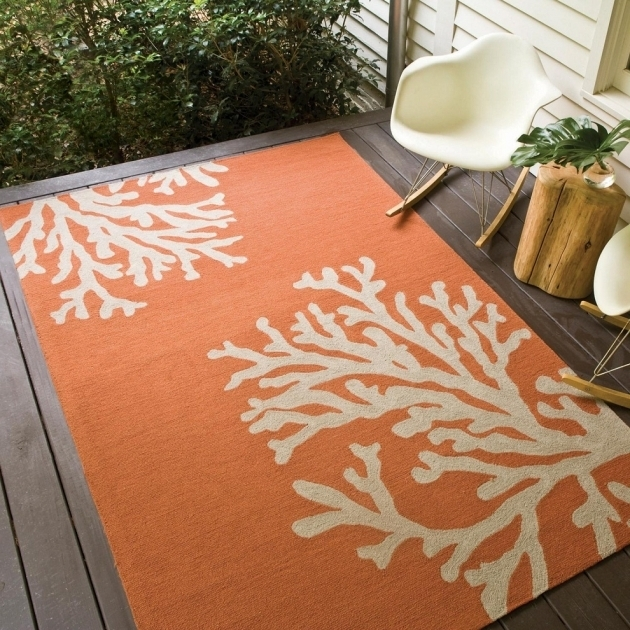 Colored Indoor Outdoor Runner Rugs Beautiful Ideas Images 50