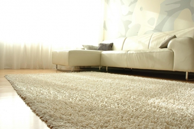 Large Shag Area Rugs For Home Decorations Image 32