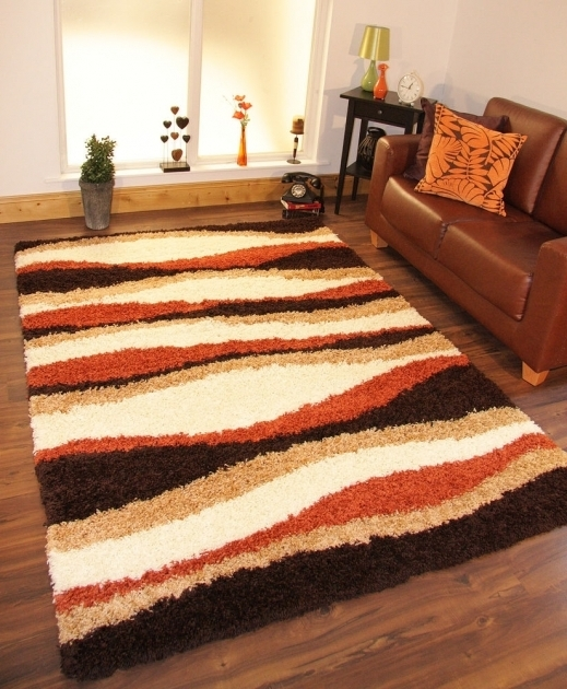 Large Shag Area Rugs Soft Warm Terracotta Burnt Orange Cream Brown Image 80