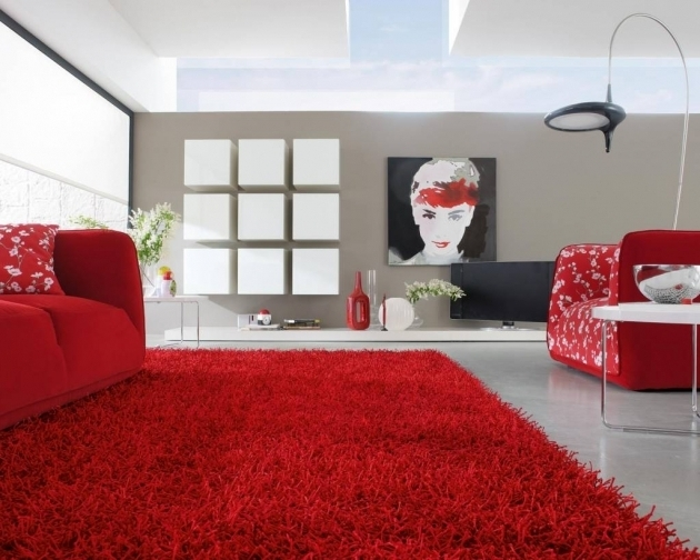 Modern Large Red Area Rug Living Room Images 63