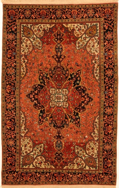 4 X 6 Sarouk Rug Hand Knotted Orange Persian Rug Pictures 26